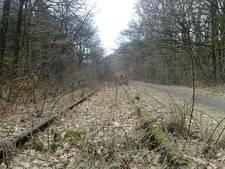 'Berg en Dal mag spoorlijn naar Kleef niet opgeven'