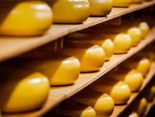 Kaaspakhuis Woerden brengt weg van kaas in beeld