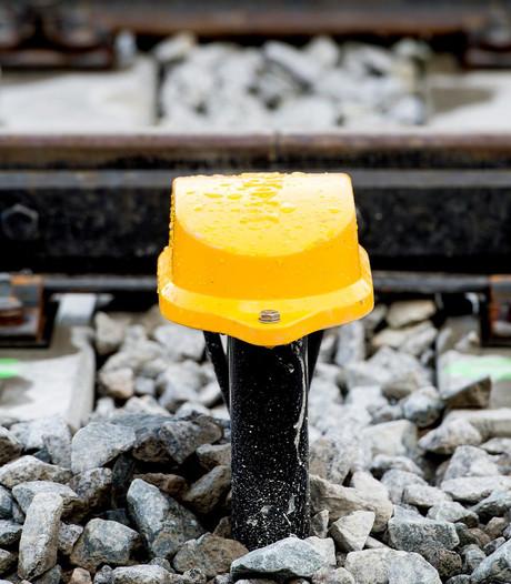 Koe ontregelt treinverkeer tussen Delft en Rotterdam