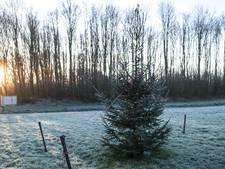 Kerst in Gelderland dit jaar de op twee na warmste ooit