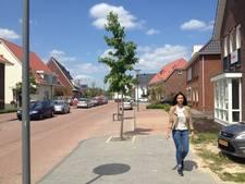 Start verkoop woningen Wijchense wijk Huurlingsedam