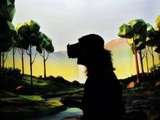 Vrouw aangerand in virtual realitygame