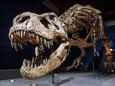 T. rex Trix zorgt voor uitverkocht Naturalis