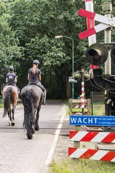 Ruiter (10) en paard op haar na geschept door trein in Soest