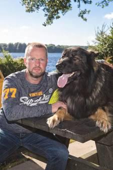 Hondenbezitters stellen gemeente aansprakelijk voor gewonde honden