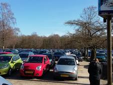 Volgende week besluit over pandaparkeerplaats in Wageningen