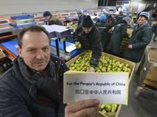 Fruittelers in Rivierenland voelen agrarisch succes nog niet