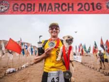 'Marathonhondje' Gobi is weer terug bij zijn baasje