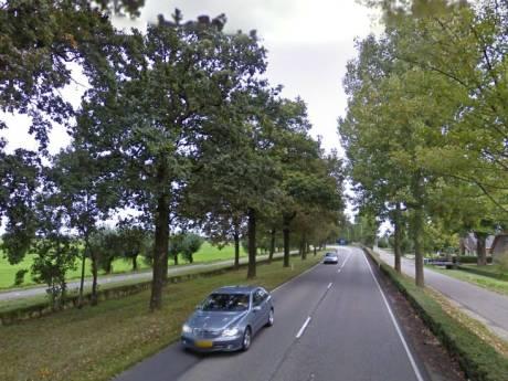 Utrecht gaat N484 door Vijfheerenlanden toch fors aanpakken, 2022 gaat schop in de grond