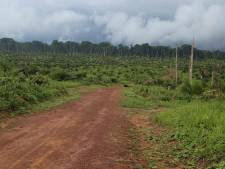 La déforestation en Amazonie a déjà augmenté de 93% cette année