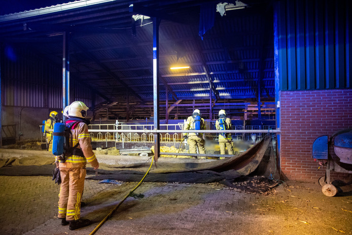 De brandweerkorpsen van Elburg en Oldebroek bestreden het vuur in de stal.