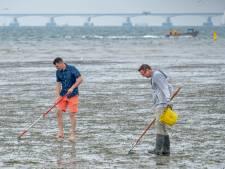 Schoonmaakactie op strandje van Ouwerkerk