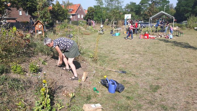 In buurttuin 'Bietje bij Bietje' werden biologische bloembollen geplant.