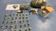 Politie vindt 700 gram cannabis in kelder