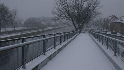 Sneeuwbeelden uit de Noorderkempen