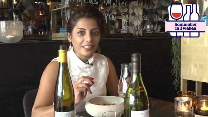 Hoe kies je wijn op restaurant? HLN-sommelier Sepideh geeft raad