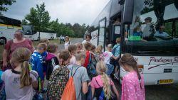 Meer dan drie uur op een bus om naar school te gaan: dagelijkse realiteit voor 550 kinderen in Vlaanderen
