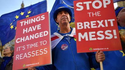 """Protest tegen brexitakkoord neemt toe: """"We willen nieuw referendum"""""""