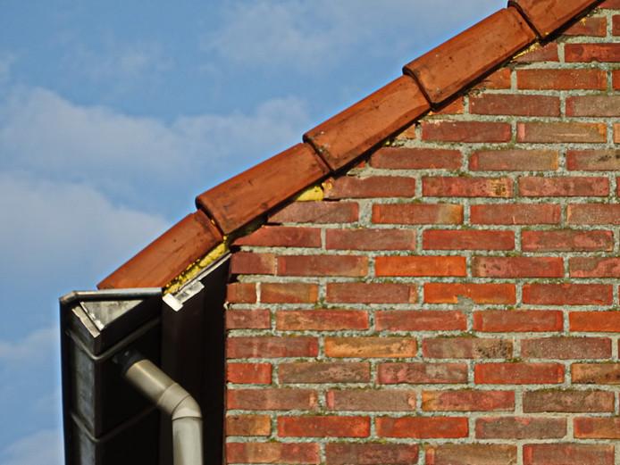 Sprundel: dichtgesmeerde gaten onder de dakrand.