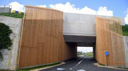 """Kortenbergse 'knikjes' op HST-fietsroute weggewerkt:  """"Veiliger, vlotter, platter en korter"""""""