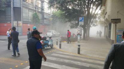 Krachtige aardbeving treft Mexico