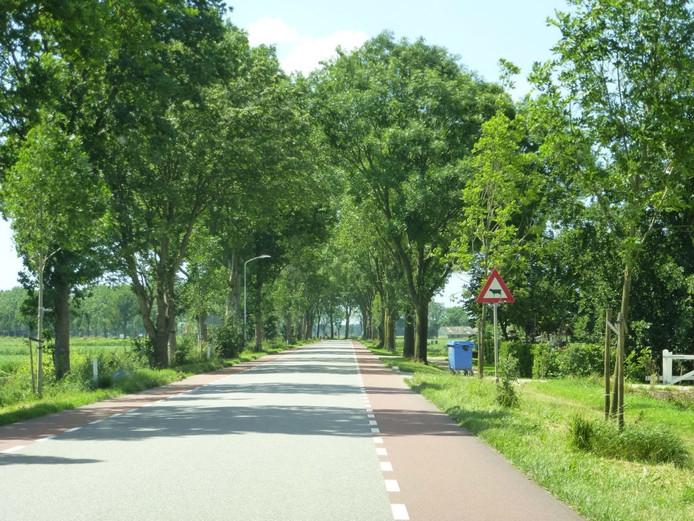 De zwaarverkeerroute in Hedel ter hoogte van de boerderij van de familie Van Zeelst.