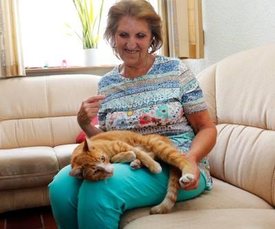 Gezonde zwerfkat kan niet naar asiel: 'Ik moest hem maar op straat zetten'
