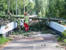 Brandweer in de regio op pad tijdens 'zomerstorm', bomen hebben het zwaar in Apeldoorn en Emmeloord