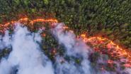 """Megabranden in Siberië vernielen gebied zes keer groter dan België: """"Russische overheid moet snel in actie komen"""""""
