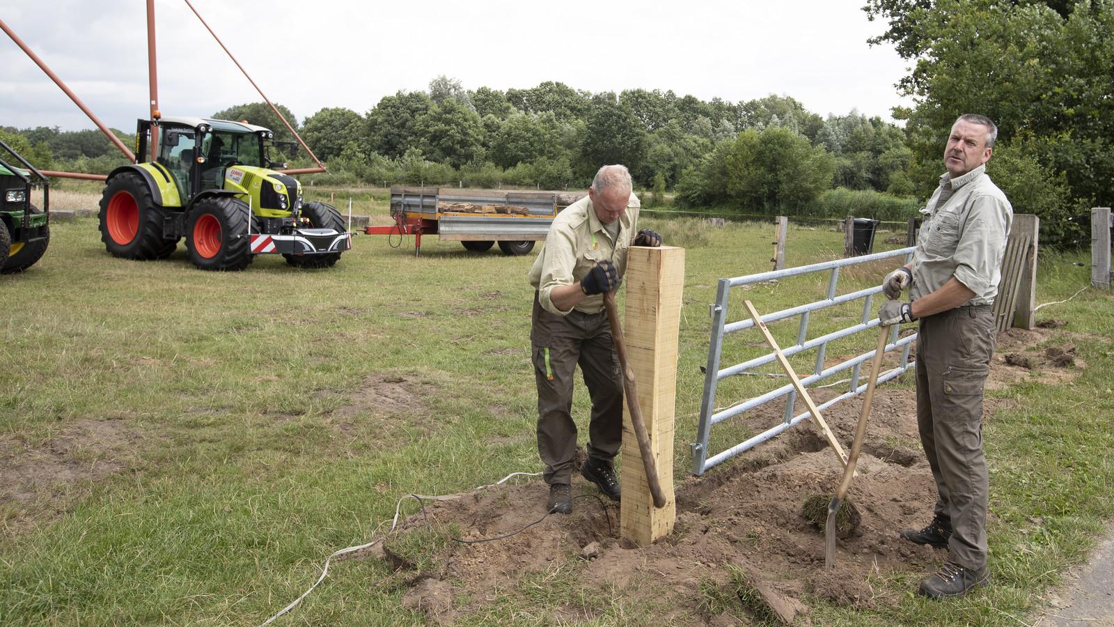 De ligweide aan de Regge bij Hellendoorn wordt afgerasterd door medewerkers van Landschap Overijssel. Stroom- en prikkeldraad moet voorkomen dat koeien deze ligweide oplopen en hier hun  behoefte doen.