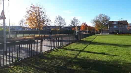 Op het grasveld naast het Lodijkepad zou een Kiss and ride-strook aangelegd kunnen worden. De gemeente Bergen op Zoom wil daar niet aan.