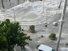 Minitsunami treft Mallorca: Duitse vader verdrinkt, zoontjes gered