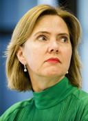 Minister Van Nieuwenhuizen wil dat de laagvliegroutes eerder verdwijnen.
