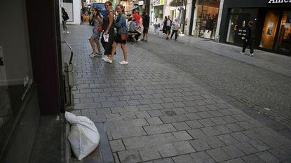 Korenslang ontsnapt uit terrarium schrikt Diestsestraat op