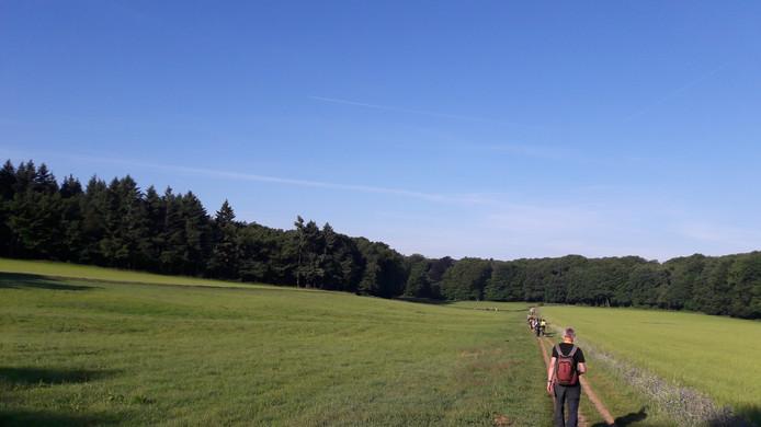 Het parcours van de wandeltocht liep onder andere door groene heuvels.