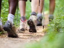 Meer dan honderd wandelaars doen mee aan eerste editie 24 Uur Oostburg