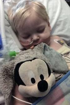 Kankerpatiëntje Dylan (2) ontwaakt nadat ouders beademing wilden stoppen