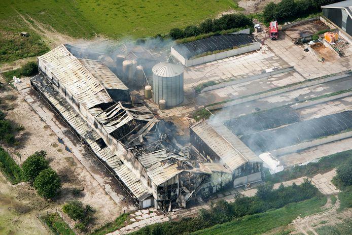 Bij een grote brand aan de Tarpanweg in Swifterbant zijn woensdag 40.000 kippen verbrand.