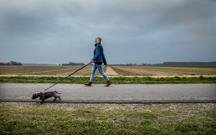 Een omwonende van de Rinnengommerlaan laat haar hond uit. Hier werden ook twee vrouwen neergestoken.