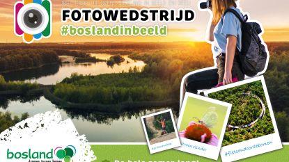 Bosland lanceert nieuwe fotowedstrijd