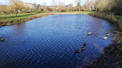 Vrouw sukkelt in het water in Frimoutpark