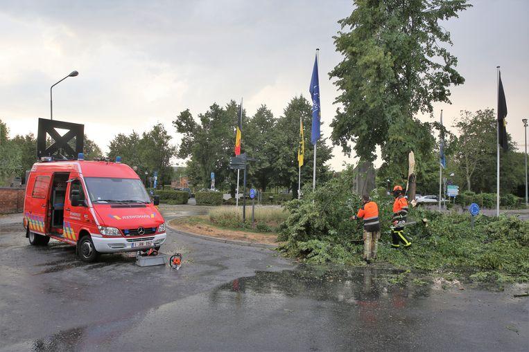 Aan de Slingerweg was de brandweer in de weer om takken te verzagen.