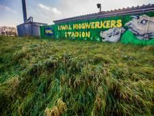 Bijna twee derde stemmers is voor woningen in hoeken stadion FC Dordrecht