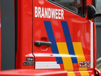 Brand in garage snel onder controle