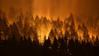 Tiener die bosbrand in Oregon aanstak veroordeeld tot boete van 37 miljoen dollar