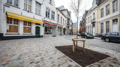 Er wordt nog gewerkt in Brugge: Mallebergplaats is afgewerkt (mét boom)