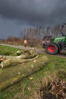 Resterende essen aan de Trekvaart in IJsselmuiden tegen de vlakte