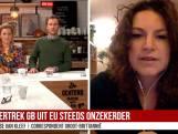 Suse van Kleef over Brexit: De belangrijkste stemming in jaren