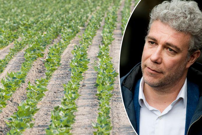 """""""Het Gewest zal deze landbouwgronden ter beschikking stellen van landbouwers met het oog om de korte keten aan te moedigen"""", zegt Brussels minister Alain Maron (Ecolo)."""