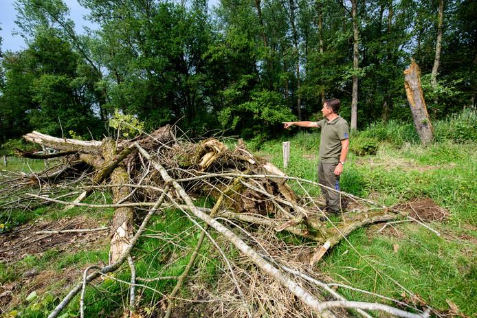 Boswachter Michel Hendrix laat de schade zien in het bos, door de storm en door het waterschap.